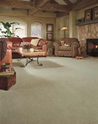 Carpeting Available At Chicago Street Decorating Center In